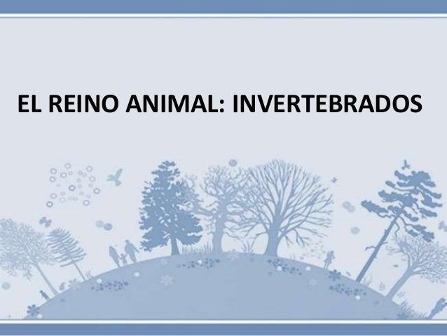 EL REINO ANIMAL: INVERTEBRADOS