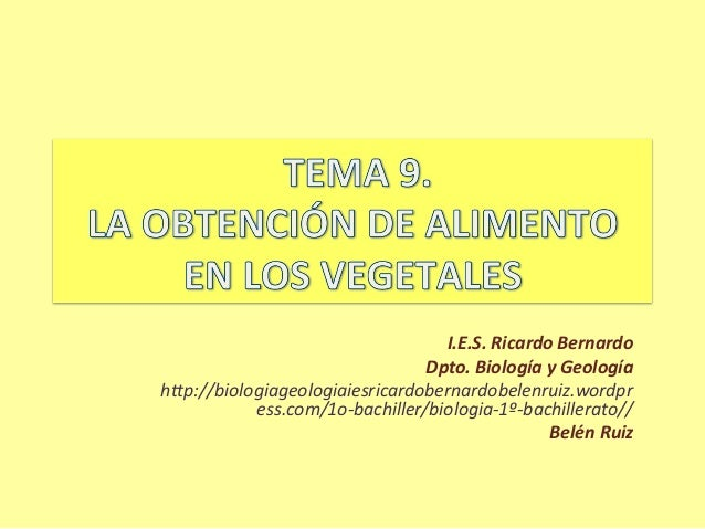 I.E.S. Ricardo Bernardo                                 Dpto. Biología y Geologíahttp://biologiageologiaiesricardobernardo...