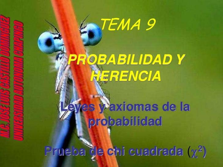 TEMA 9   PROBABILIDAD Y     HERENCIA  Leyes y axiomas de la      probabilidadPrueba de chi cuadrada (c2)