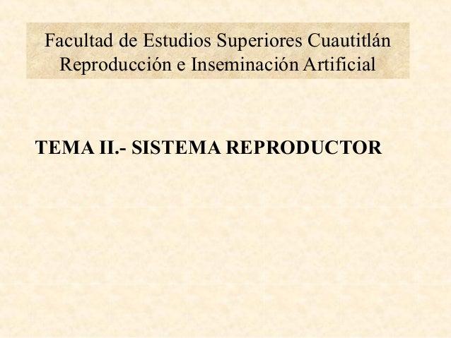 Facultad de Estudios Superiores Cuautitlán Reproducción e Inseminación Artificial TEMA II.- SISTEMA REPRODUCTOR