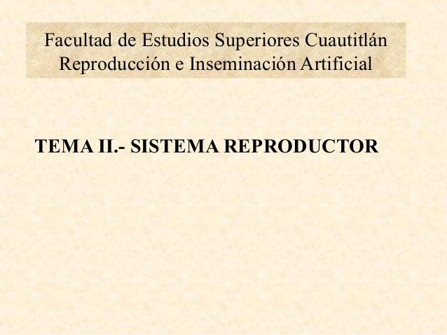 Facultad de Estudios Superiores Cuautitlán Reproducción e Inseminación ArtificialTEMA II.- SISTEMA REPRODUCTOR