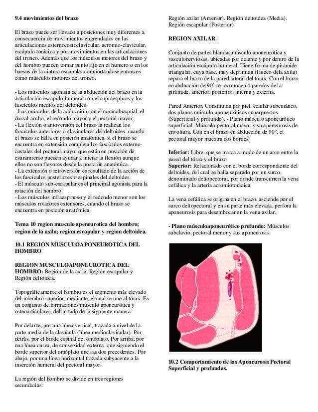 Temas 6,10 morfofisiologia
