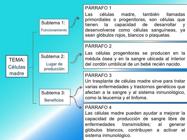 <ul><li>PÁRRAFO 1 </li></ul><ul><li>Las células madre, también llamadas primordiales o progenitoras, son células que tiene...