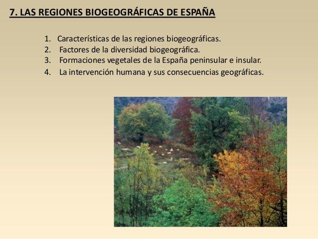 7. LAS REGIONES BIOGEOGRÁFICAS DE ESPAÑA 1. 2. 3. 4.  Características de las regiones biogeográficas. Factores de la diver...