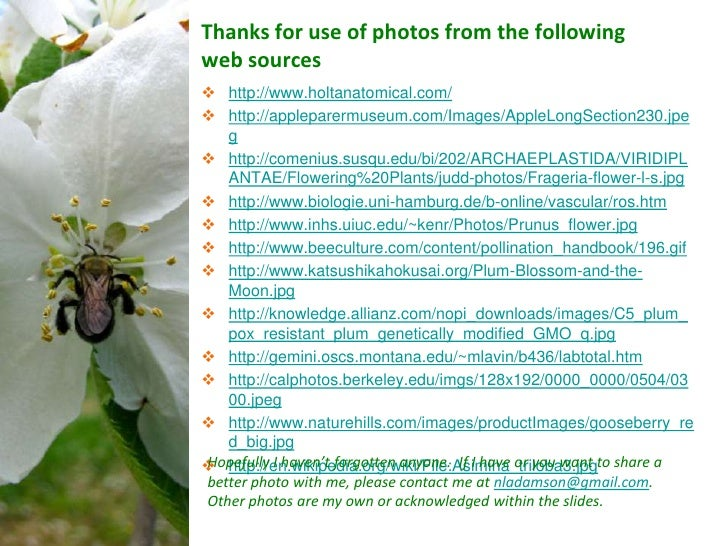 Thanks for use of photos from the followingweb sources http://www.holtanatomical.com/ http://appleparermuseum.com/Images...