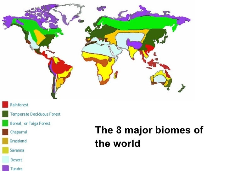 major biomes of the world image collections