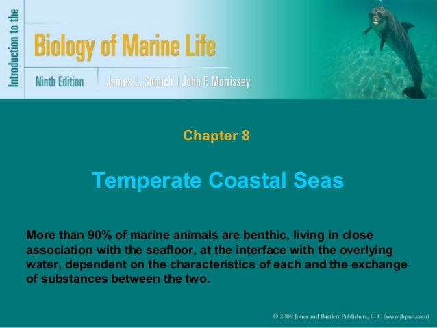 Chapter 8  Temperate Coastal Seas More than 90% of marine animals are benthic, living in close association with the seaflo...