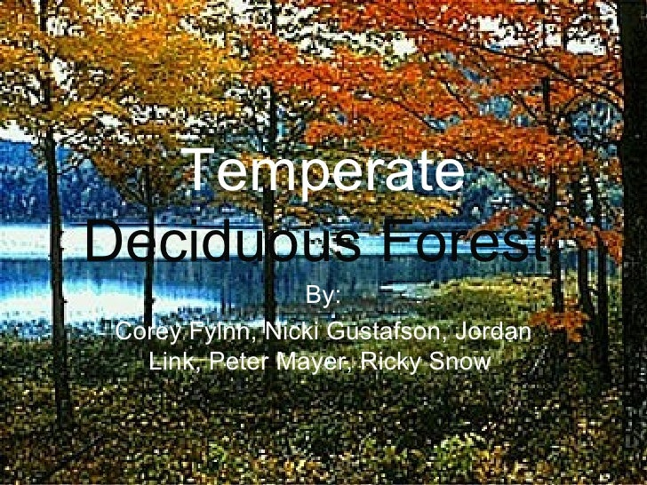 Temperate  Deciduous Forest: By: Corey Fylnn, Nicki Gustafson, Jordan Link, Peter Mayer, Ricky Snow
