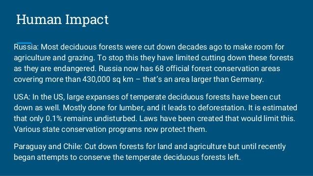 tropical deciduous forest plants