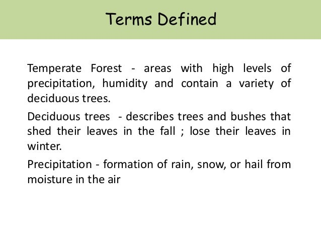 TEMPERATE FORESTS Slide 2