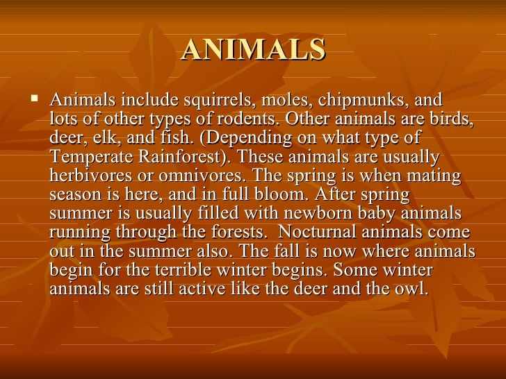 ANIMALS <ul><li>Animals include squirrels, moles, chipmunks, and lots of other types of rodents. Other animals are birds, ...