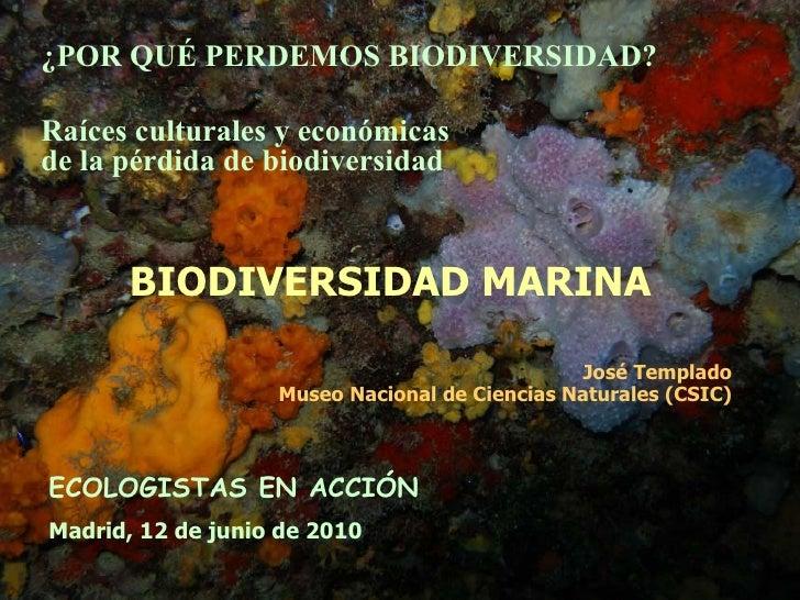 BIODIVERSIDAD MARINA José Templado Museo Nacional de Ciencias Naturales (CSIC) ECOLOGISTAS EN ACCIÓN Madrid, 12 de junio d...