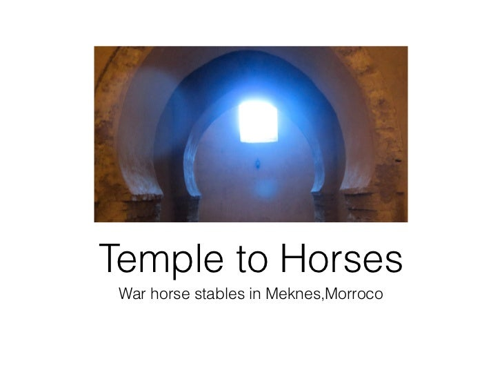 Temple to Horses War horse stables in Meknes,Morroco