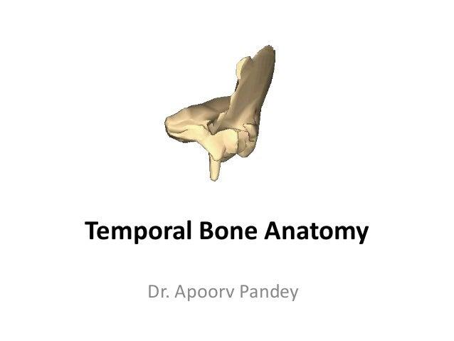 Temporal Bone Anatomy Dr. Apoorv Pandey