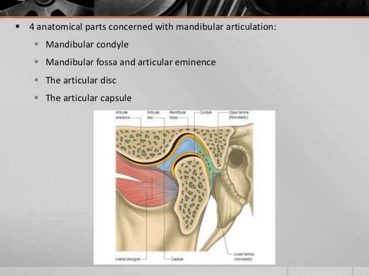 Temporo Mandibular Joint