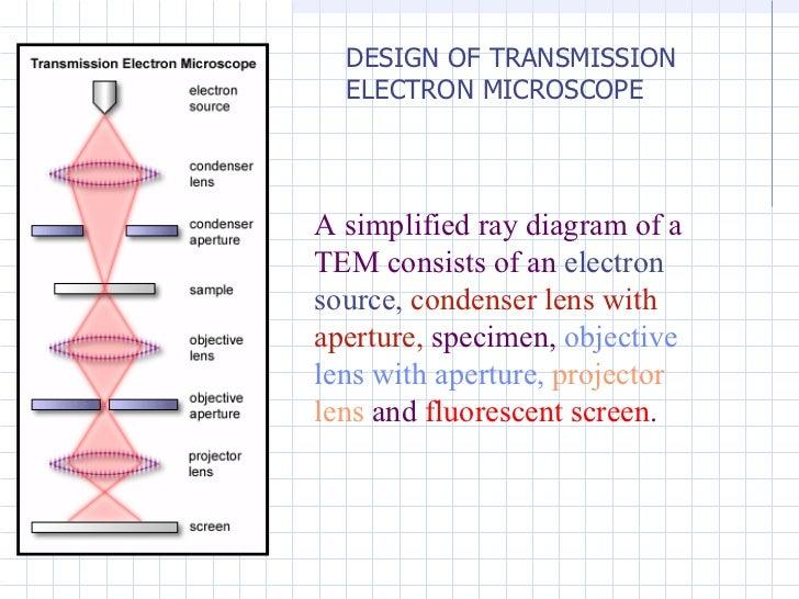 Transmission electron microscope vatozozdevelopment transmission electron microscope ccuart Images