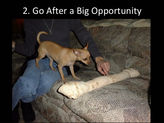 2.GoAfteraBigOpportunity