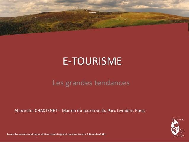 E-TOURISME                                         Les grandes tendances      Alexandra CHASTENET – Maison du tourisme du ...