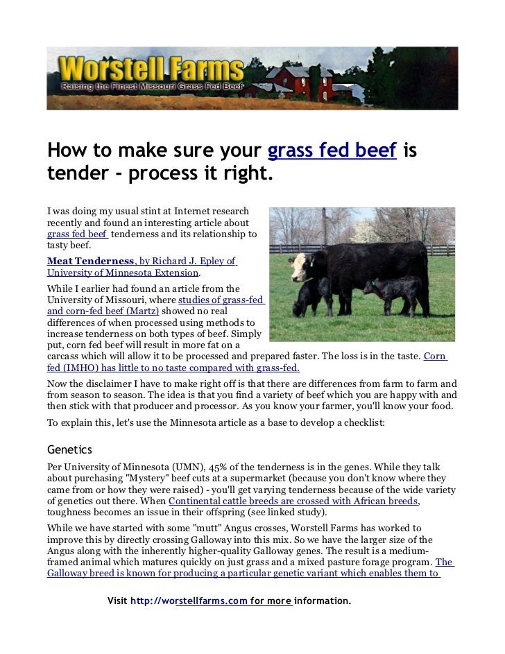 How to make sure your grass fed beef istender - process it right.I was doing my usual stint at Internet researchrecently a...