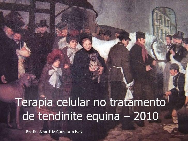 Terapia celular no tratamento de tendinite equina – 2010 Profa. Ana Liz Garcia Alves