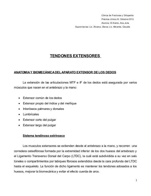 Clínica de Fracturas y Ortopedia Práctica clínica III. Octubre 2013. Alumna: Di Santo, Ana Julia Supervisoras: Lic. Álvare...