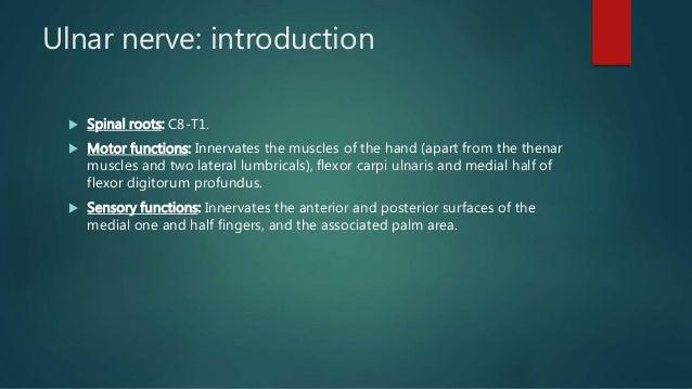 ULNAR NERVE PALSY AND TENDON TRANSFERS Slide 2