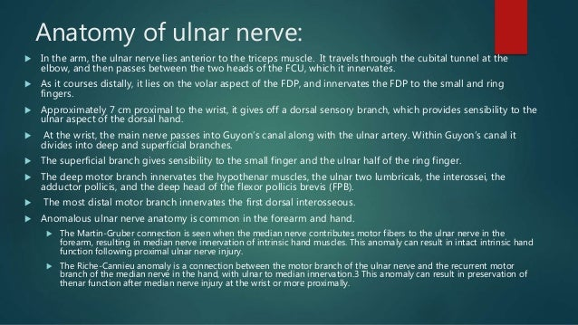 ULNAR NERVE PALSY AND TENDON TRANSFERS Slide 3
