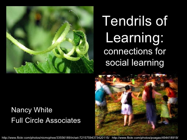 Tendrils of Learning:  connections for social learning Nancy White Full Circle Associates http://www.flickr.com/photos/nic...
