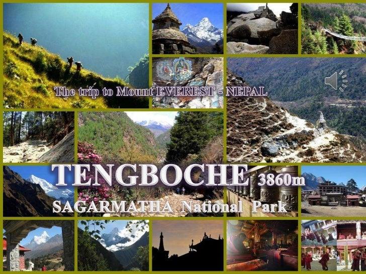 TengbocheSeptember 8, 2012               1