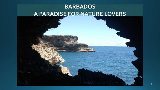 BARBADOS A PARADISE FOR NATURE LOVERS