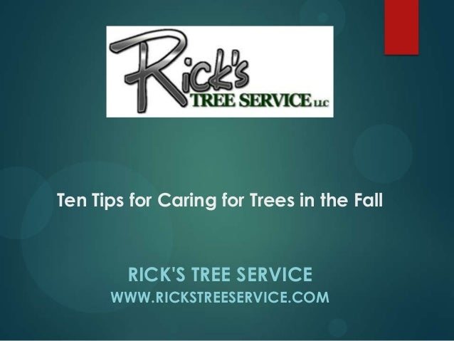 RICK'S TREE SERVICE WWW.RICKSTREESERVICE.COM Ten Tips for Caring for Trees in the Fall