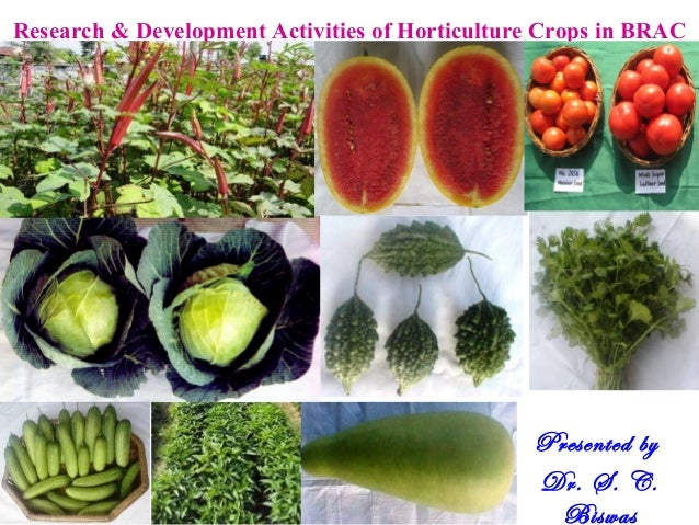 Research & Development Activities of Horticulture Crops in BRAC Presented by Dr. S. C. Biswas