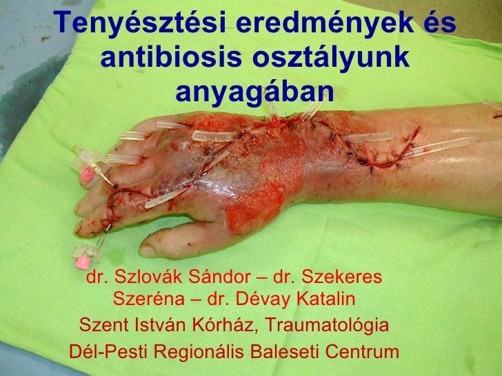 Tenyésztési eredmények és antibiosis osztályunk anyagában dr. Szlovák Sándor – dr. Szekeres Szeréna – dr. Dévay Katalin Sz...