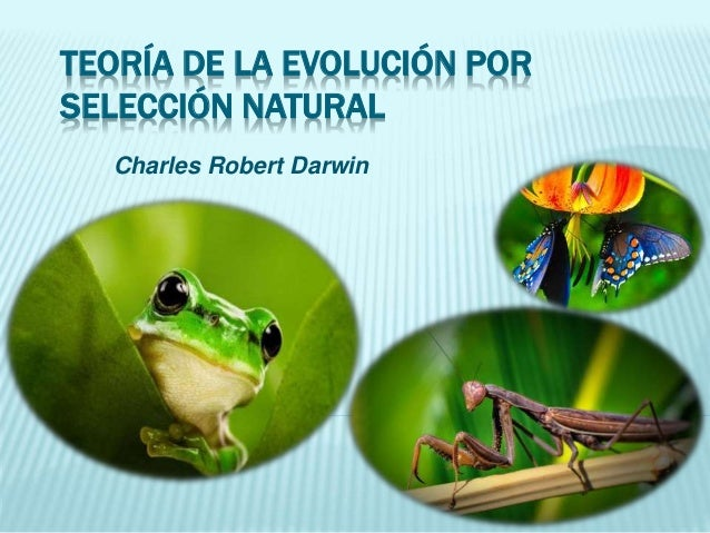 TEORÍA DE LA EVOLUCIÓN POR SELECCIÓN NATURAL Charles Robert Darwin