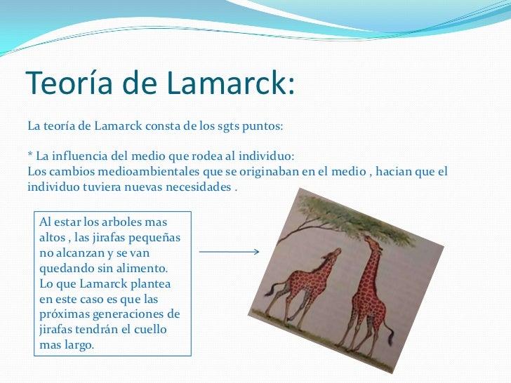 Teoría de Lamarck:<br />La teoría de Lamarck consta de los sgts puntos:* La influencia del medio que rodea al individuo:Lo...