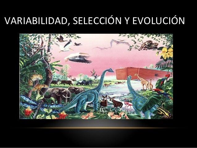 VARIABILIDAD, SELECCIÓN Y EVOLUCIÓN
