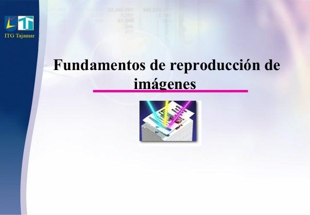 Fundamentos de reproducción de imágenes