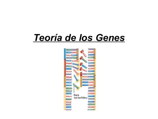 Teoría de los Genes