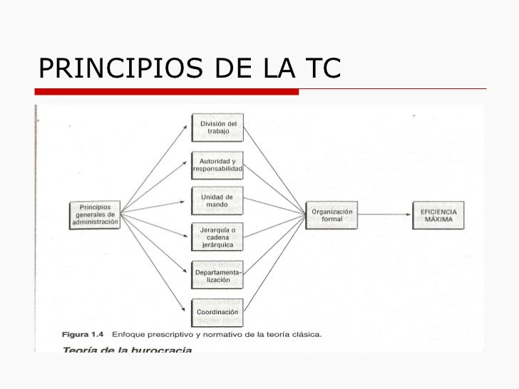 PRINCIPIOS DE LA TC