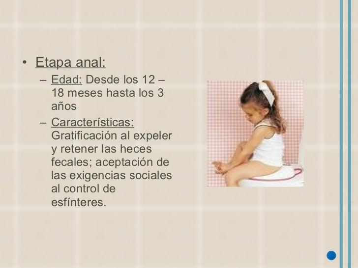 <ul><li>Etapa anal: </li></ul><ul><ul><li>Edad:  Desde los 12 – 18 meses hasta los 3 años </li></ul></ul><ul><ul><li>Carac...