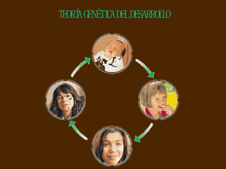 TEORÍA GENÉTICA DEL DESARROLLO