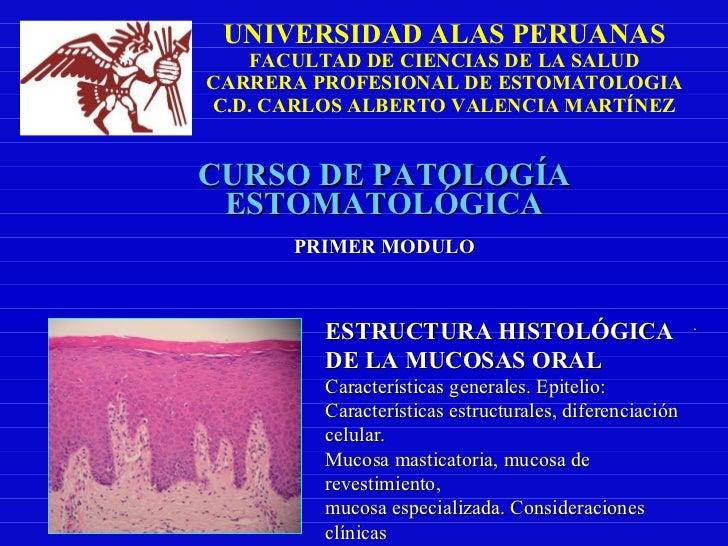 UNIVERSIDAD ALAS PERUANAS FACULTAD DE CIENCIAS DE LA SALUD CARRERA PROFESIONAL DE ESTOMATOLOGIA C.D. CARLOS ALBERTO VALENC...