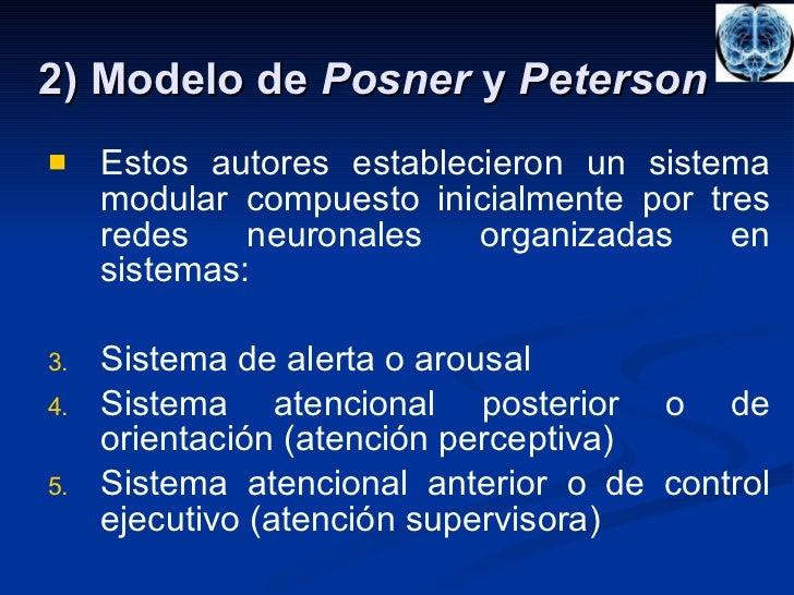 2) Modelo de  Posner  y  Peterson <ul><li>Estos autores establecieron un sistema modular compuesto inicialmente por tres r...