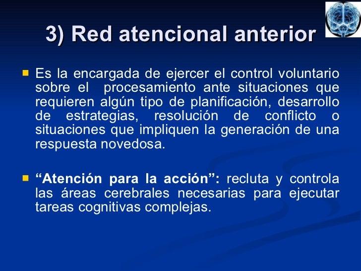 3) Red atencional anterior <ul><li>Es la encargada de ejercer el control voluntario sobre el  procesamiento ante situacion...