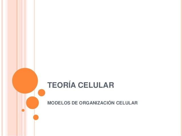 TEORÍA CELULAR MODELOS DE ORGANIZACIÓN CELULAR