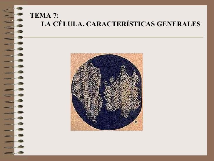 TEMA 7:  LA CÉLULA. CARACTERÍSTICAS GENERALES