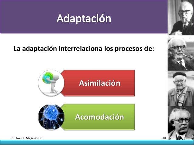 La adaptación interrelaciona los procesos de:                           Asimilación                           AcomodaciónD...