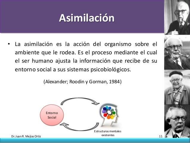 Asimilación• La asimilación es la acción del organismo sobre el  ambiente que le rodea. Es el proceso mediante el cual  el...