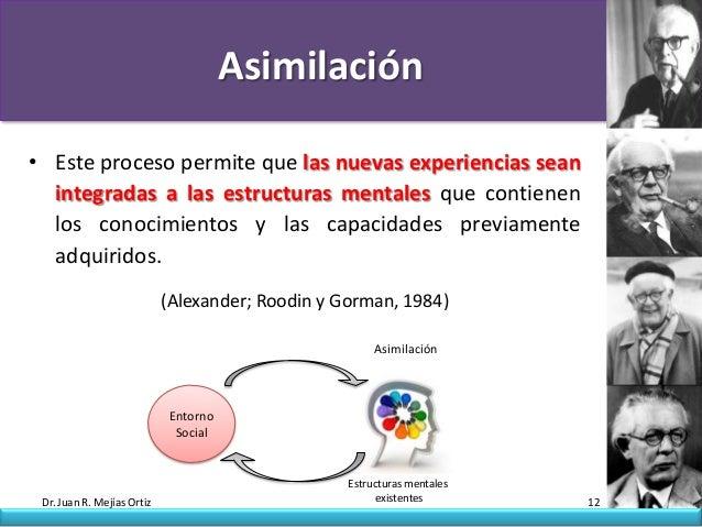Asimilación• Este proceso permite que las nuevas experiencias sean  integradas a las estructuras mentales que contienen  l...