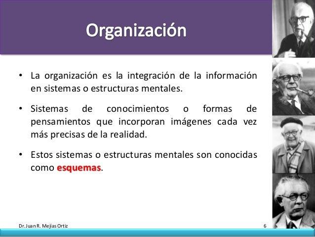 • La organización es la integración de la información  en sistemas o estructuras mentales.• Sistemas de conocimientos o fo...
